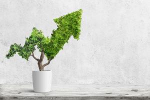 sequoia_duurzaam_beleggen